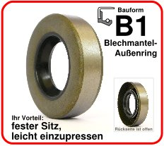 Simmerringe Bauform B1
